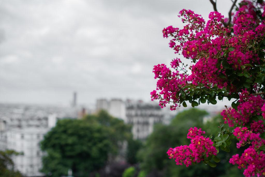 photographe paris - montmartre